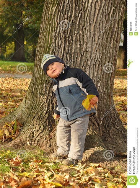Boy In Front Of Tree Stock Image - Image: 16593771