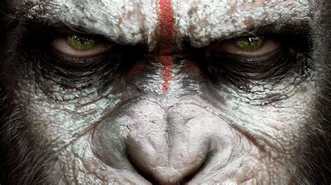 Dawn of the Planet of the Apes HD Wallpaper | Background